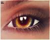 |L Hazel Eyes M
