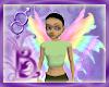 Bou Rainbow Wings