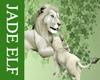 [JE] White Lion & Cub