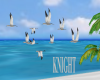 ANIMATED SEAGULL'S~2
