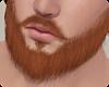 !! Thomas Beard