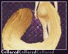 A | Zelts Tail V2