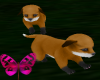 ~A~2 Cute Foxies