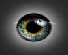 eye blue grey I