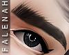 👁 Rose Eyebrow