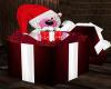 X-mas Gift Bear