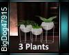 [BD]3 plants