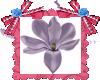 Flor satinada LOVE