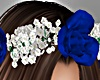 BabyBreath - Blue Roses