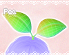 P! Sprout DRV