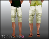 D- Casual Shorts Gainsbo