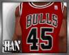 [H]Chi►Bulls J45*Red
