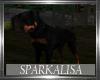 (SL)Junk Yard Rottweiler