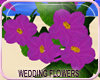 MLM JOR Wedding Flowers