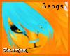 [Zlix] Jen Bangs