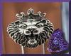 PB*Male King Lion RT