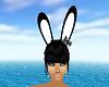 Bunny Ears Anim2