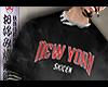 New York Skicen