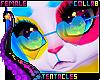 ★ PANda   Glasses