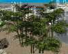 Bamboo Bushes Deco