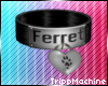 Black Ferret Collar F