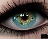 Eyes - Aqua