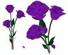 Purple Fallin Rose Petal