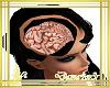 cerebro dentro de cabeza