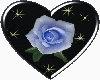 !KYU! Heart Rose