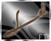 Brown Long Tail [FT]