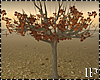 Autumn Falling Tree