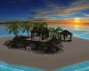 Island w/Pool