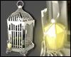 +Antique Bird Cage+