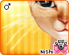 [Nish] Cougar Whiskers M