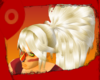 SU Jasper ^ Ponytail
