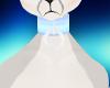 Popo collar C: