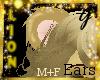 G- Gold Lion, Ears