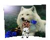 Port. Wolf Background V4