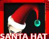 Mens Sexy Santa Hat