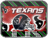 [TK] Flag: Texans