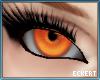 Fox Fire Eyes