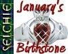 !!S Birthstone January