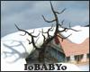 [IB]Winter: Tree