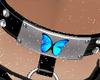 [AKC]Butterfly Collar