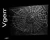 Spider Web White