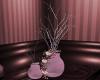 xDSx Plum Elegance Plant