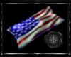 ~BB~ Flag Pillow