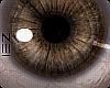 !! Ess Eyes