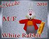 !a Avatar White Rabbit
