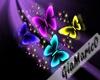 g;Neon Butterfly
